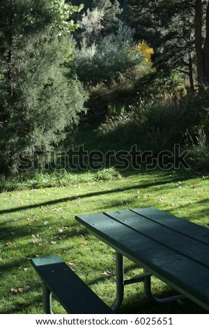 Picnic bench in shady green park