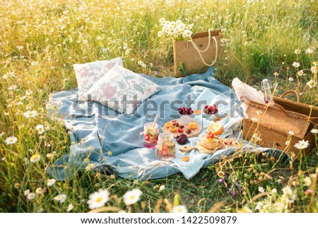 Picnic in the chamomile flower field  with fruits, lemonade and sweet vegan dessert. Summertime eco picnic setting on the grass with straw basket, organic linen tablecloth and pillows. Summer idea.