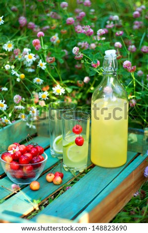 Picnic in the grass with berries and refreshing lemonade