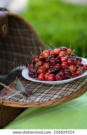 picnic in the green park. sweet cherries in the basket