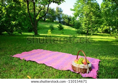 Picnic in the park with a basket of summer fruit