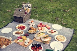 Picnic Lunch Meal Outdoors Park Food Concept