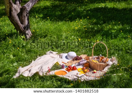 picnic on green grass. Basket with bread and a bottle and bananas in a basket and tomatoes with apples. still life on green grass. a blanket and food for a picnic in summer Park