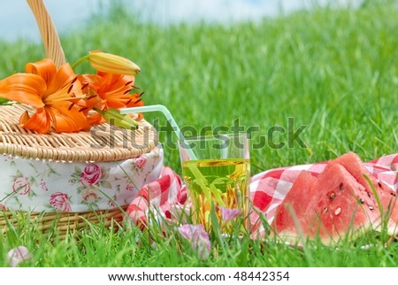 Picnic on Meadow at Sunny Day,Closeup.
