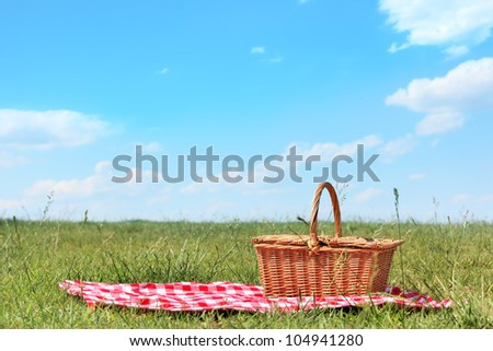 picnic setting on meadow with copy space.