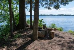 Picnic spot on the shore of Lake Valdayskoye. Novgorod Oblast, Russia.