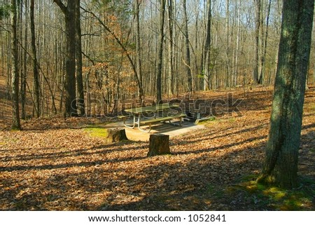 Picnic table in an isolated area in a Tennessee state park in the autumn.