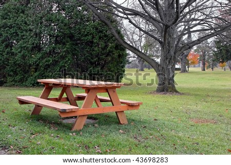 picnic table in autumn park with trees