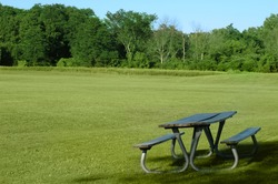 picnic table on the foreground and trees and grass field on the background