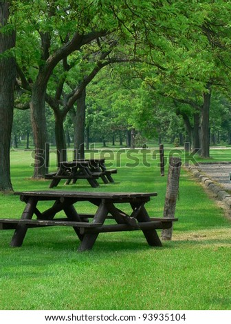 Picnic tables amongst greenery.
