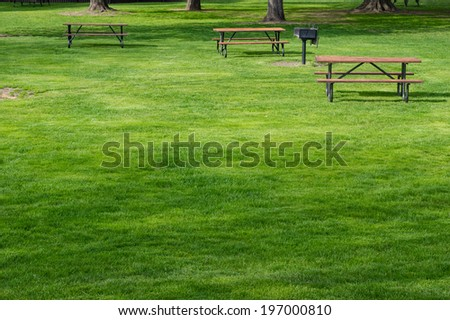 Stock Photo Picnic tables on green lawn in a park