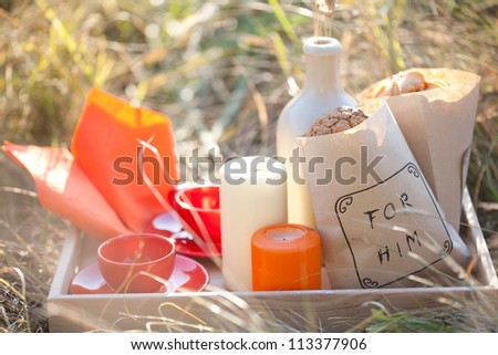 Picnic - tea and cookies