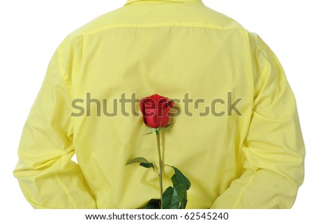 Picture a man in a yellow shirt holding a red rose behind his back. Isolated on white background