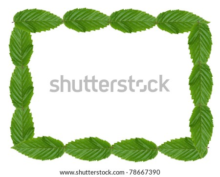 Picture frame made of green leaves on white background.