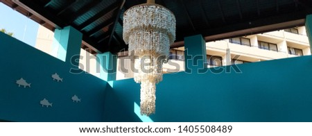 picture of a chandelier made of seashells.