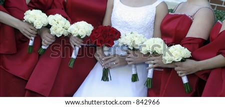 Picture of a row of bridesmaids and bride with their bouquets
