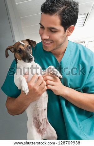 Picture of a veterinary taking care of pet