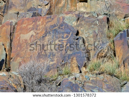 Picture of buffalos, antelopes, dogs, wolves & people with bows on rocks at Tamgaly National Petroglyph Park (Kazakhstan). Bronze age.