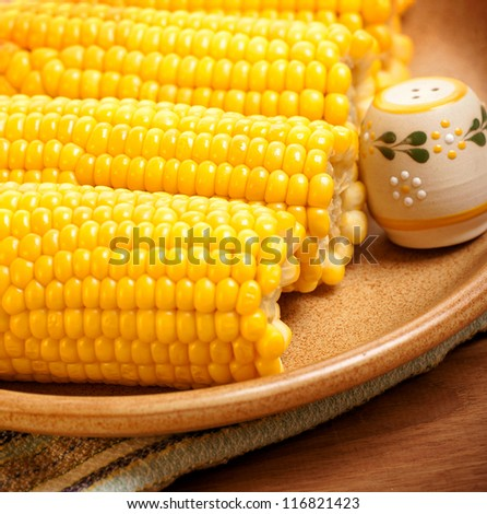 Picture of cooked corncob with saltshaker on the plate in kitchen