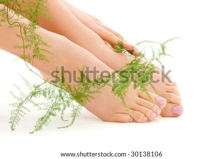 picture of female feet with green plant over white