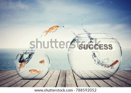 Picture of golden fish leaping to another aquarium with success word, concept of better business #788592052