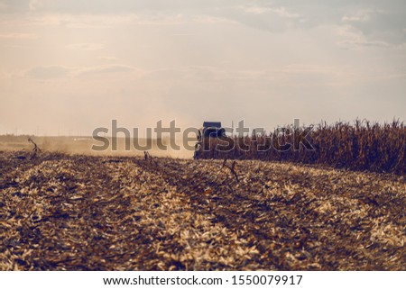 Picture of harvester in corn field harvesting in autumn. Husbandry concept. #1550079917