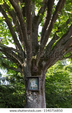 Picture of Madonna with Jesus on the Tree, Mountain Jesenik, Czech Republic