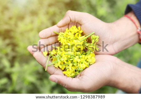 Picture of man hand is holding mustard yellow flowers.