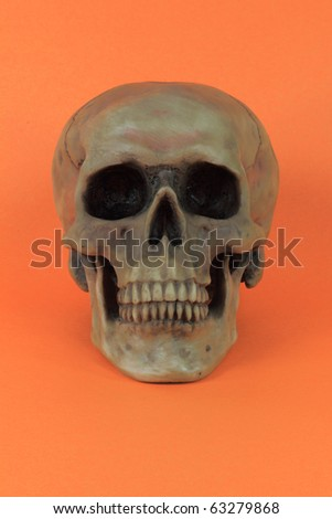Picture of prop for the popular North American Holiday Halloween. Human Scull, over orange, background - vertical orientation.