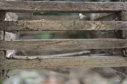 Picture of the old wooden slats.