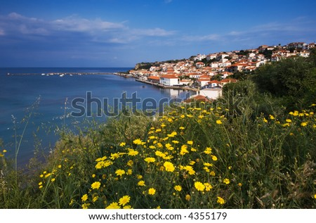Picture of the town of Koroni with yellow daisies in the foreground