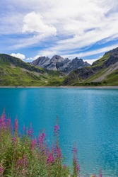 Picture of the turquoise lake Lunersee in the alps. With pink flowers, green fields and the rocks of the mountains in the background, as well as a traditional alpine hut.