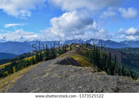 Picture on Hurricane Ridge in Olympic National Park