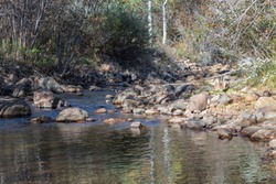 Picture taken facing upstream on Beaver Creek in Colorado