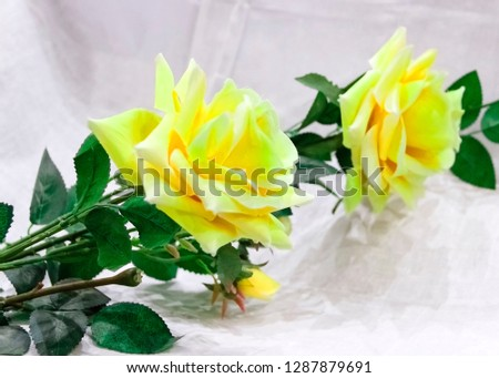 pictured in the photo big beautiful artificial yellow roses on a gray background