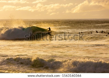 Pictureof the sea surf with surfer on the North Shore, Oahu, Hawaii, with unrecognizable people #1563160366