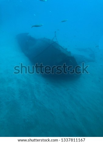 Pictures from inside a yellow submarine under the sea
