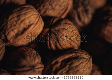 pictures of nuts with a macri lens   Stock photo ©
