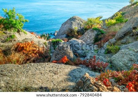 Picturesque and precipitous shore of the summer sea #792840484