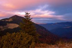 picturesque autumn image, wonderful sunset landscape in Carpathian mountains, stunning nature scenery, Europe, border Ukraine - Romania, Marmarosy range