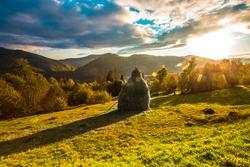 picturesque autumn landscape in ukrainian mountains, wonderful view on meadow at sunset sunlight, Carpathian mountains, Ukraine, Europe