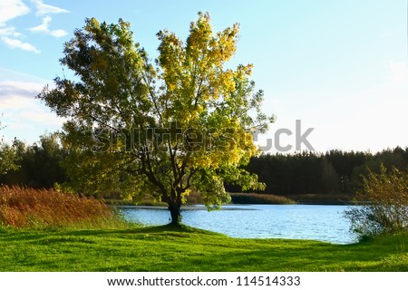 Picturesque autumn landscape with lake