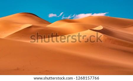 Picturesque desert landscape with dunes