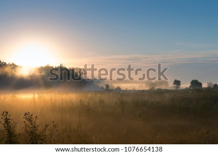Picturesque fairy sunrise over a misty meadow in summer morning
