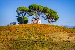 Picturesque idyllic villa house set on Bierzo hilltop vineyard landscape spanish countryside on the Way of St James Pilgrimage Trail Camino de Santiago