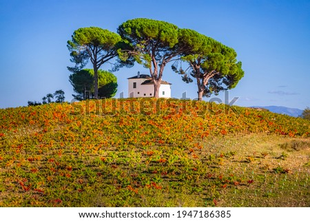 Picturesque idyllic villa house set on Bierzo hilltop vineyard landscape spanish countryside on the Way of St James Pilgrimage Trail Camino de Santiago Foto d'archivio ©