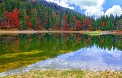 picturesque lake in the autumn forest. Mirror reflection