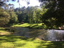 Picturesque landscape of peaceful, winding river, flowing between beautiful grassy banks. Perfect spot for a picnic and a swim with friends and family.