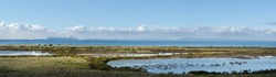 Picturesque panoramic view of the coastal wetland against the blue sea on the outskirt of Melbourne's urban area. The swamp, grass, and lagoon in the habitat areas of Cheetham Wetlands VIC Australia.