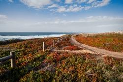 Picturesque pathway on rock ocean shore, Portugal.